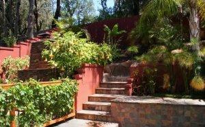 加利福尼亚,地中海风格的花园景观