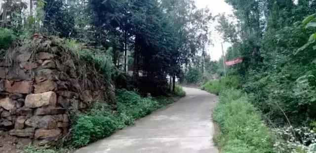 【乡村改造经典案例】红安永佳河喻畈村
