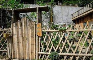 农村别墅庭院设计实景图片欣赏