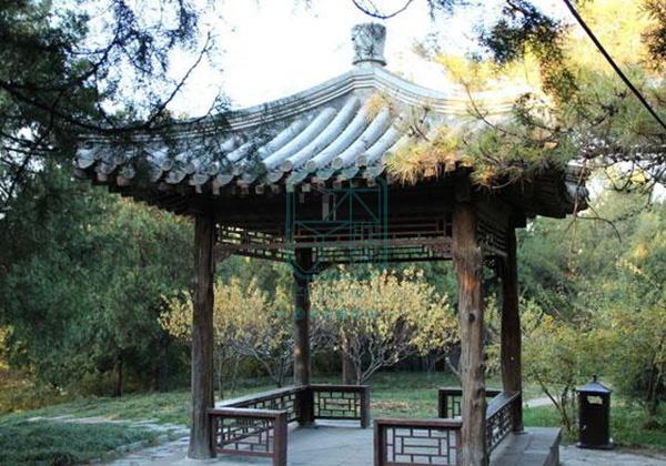园林景观设计:亭