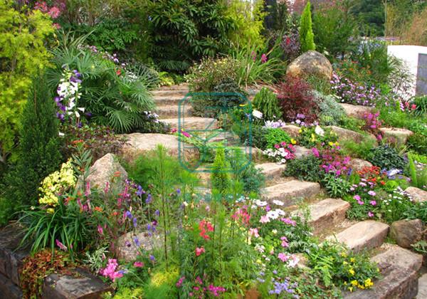 园林景观设计:植物要美得其所